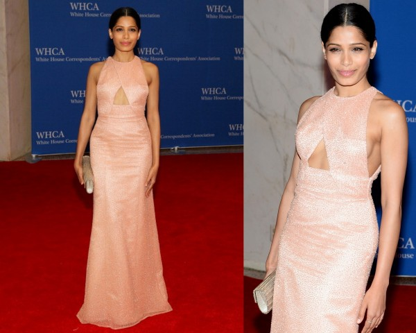 Freida-Pinto-Thakoon-2014-White-House-Correspondents-Association-Dinner-600x480